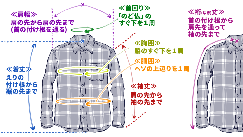 【ダサくないネルシャツを選ぶときのポイント01-a】ネルシャツの寸法要素は全部で7つ。01:首回りは、喉仏のすぐ下を1周測る。02:肩幅は、肩の先から方の先までを測る(このとき、襟の根元を通るようにして測る)。03:袖丈は、肩の先から袖の先までを測る。04:裄丈は、首の根元から肩の先を通って、袖の先までを測る。05:胸囲は、脇のすぐ下を1周測る。06:胴囲は、へその少し上あたり(腰の一番細い所)を測る。07:着丈は、襟の根元から裾の先まで、背骨に沿って測る。