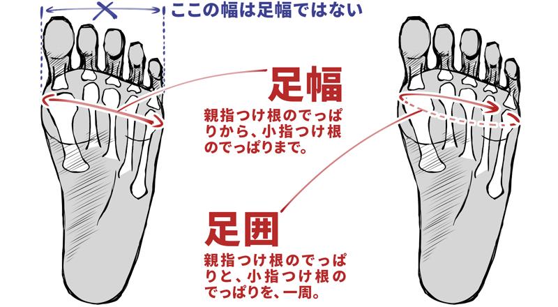 足のサイズを計測するときのポイントの1つに「足幅の測る場所」問題があります。足の幅を垂直の測った距離ではなく、「親指の付け根のでっぱり」から「小指の付け根のでっぱり」までの距離なので注意!